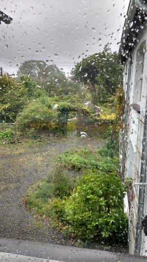 Milford rain