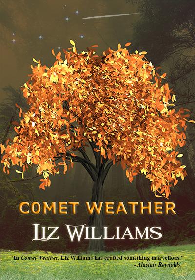book_comet_front_2d